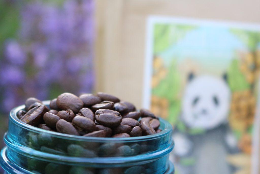 Panda-Coffee-Berlin-Pacha-Mama-2