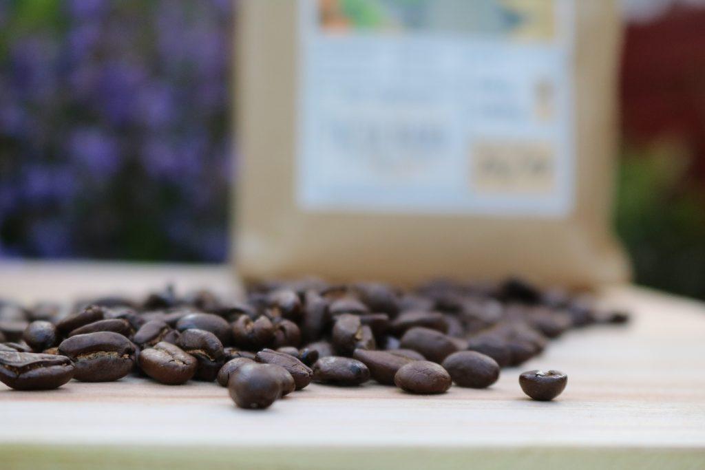 Panda-Coffee-Berlin-Pacha-Mama-3