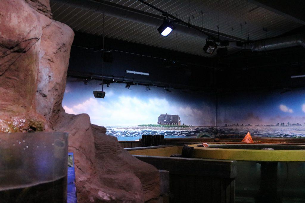 Sylt-Aquarium-5