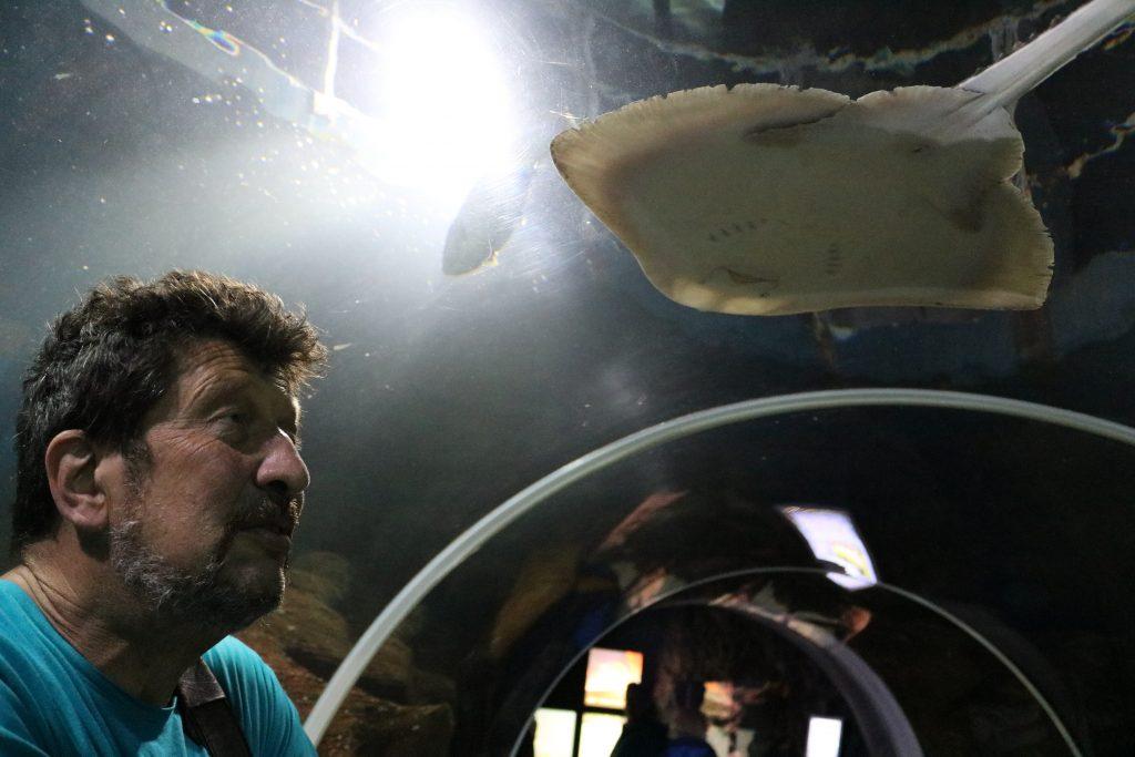 Sylt-Aquarium-9